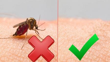 Если ребенка укусил комар: полезные советы?